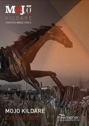 Mojo-kildare-evaluation cover